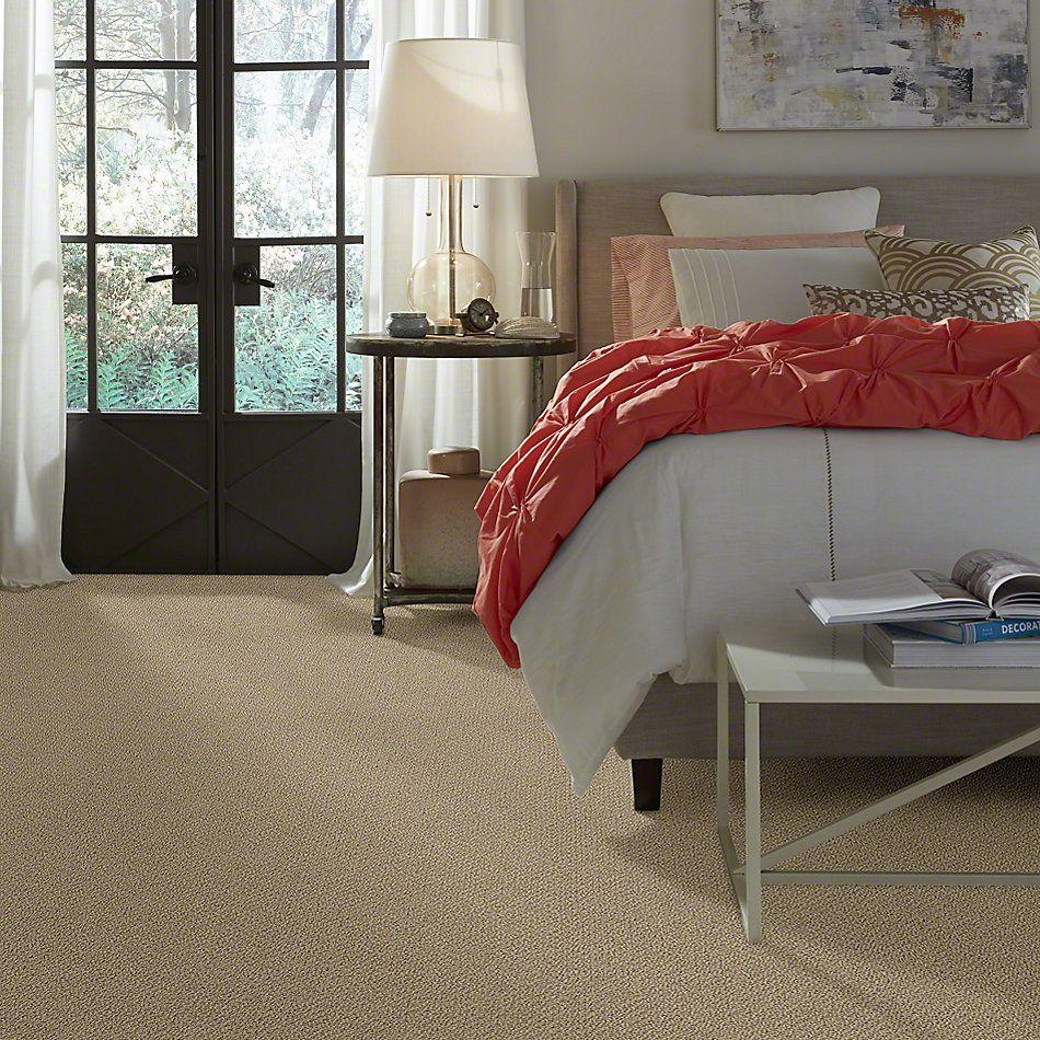 Shaw Floors Truly Relaxed Loop Taffeta 00107_E0657