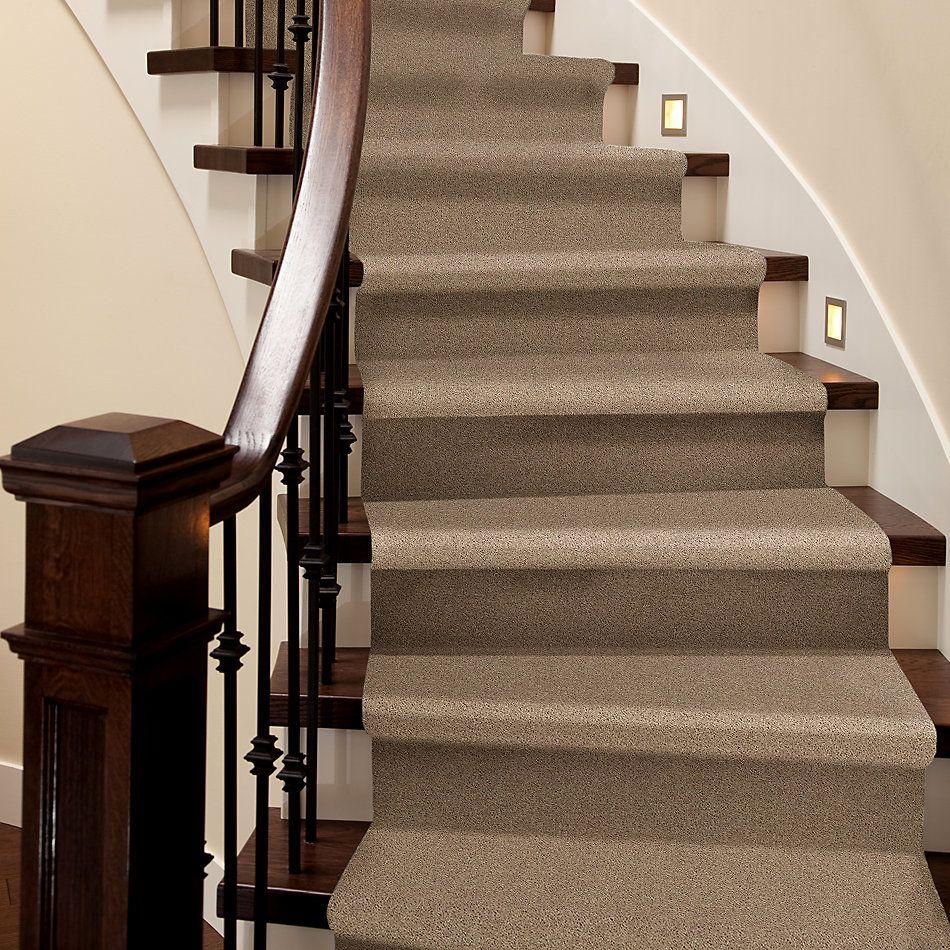 Shaw Floors Value Collections Full Court Net Tassel 00107_E0713