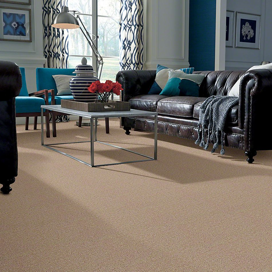 Shaw Floors Briceville Classic 15 Soapstone 00107_E0952