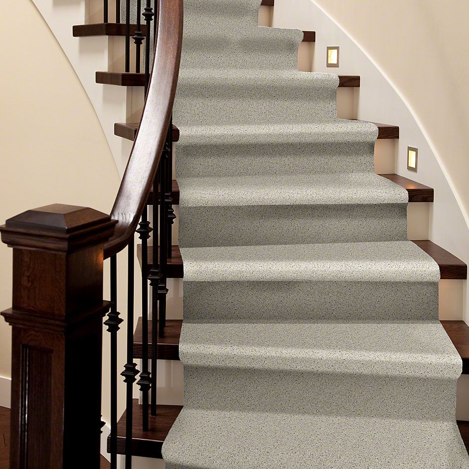 Shaw Floors Spice It Up Heirloom E9013_00107