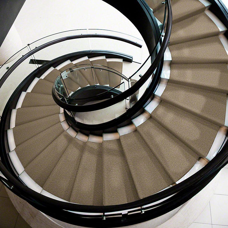 Shaw Floors Queen Point Guard 15′ Tassel 00107_Q4885
