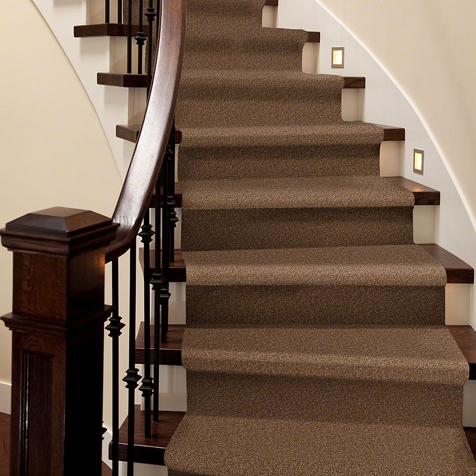 Shaw Floors Shaw Flooring Gallery Woodsboro Shiitake 00108_5278G