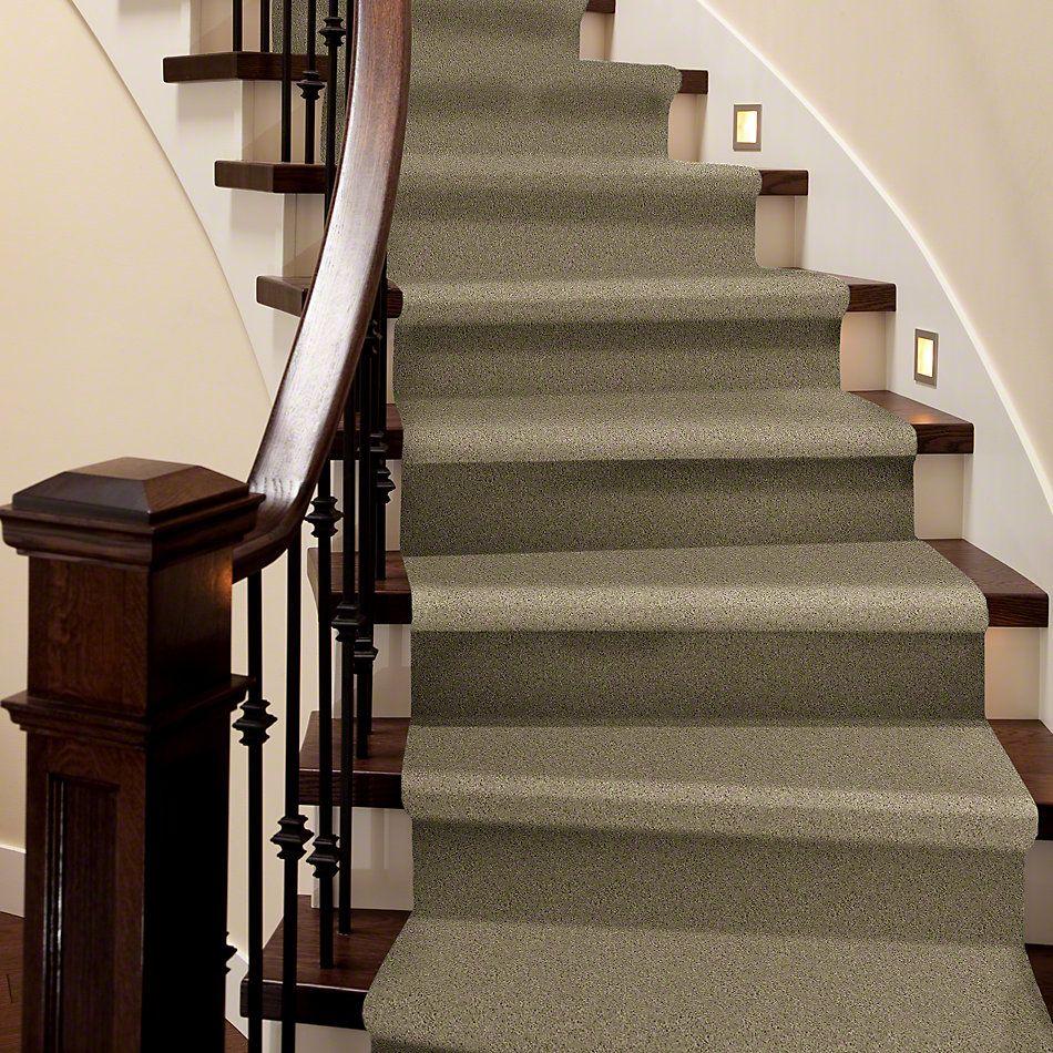 Shaw Floors Shaw Flooring Gallery Grand Image II Clay Stone 00108_5350G