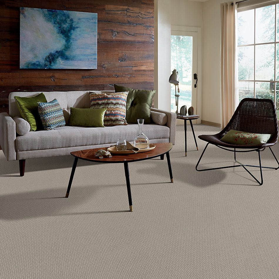 Shaw Floors Value Collections Loop De Loop Net Sandstone 00108_5E468