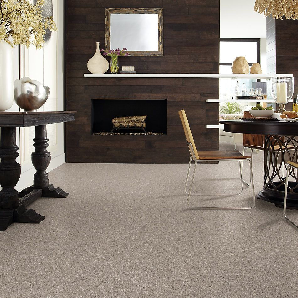 Shaw Floors Foundations Harmonious III Net Fossil Path 00108_5E473