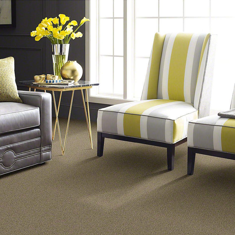 Shaw Floors Enduring Comfort I Clay Stone 00108_E0341