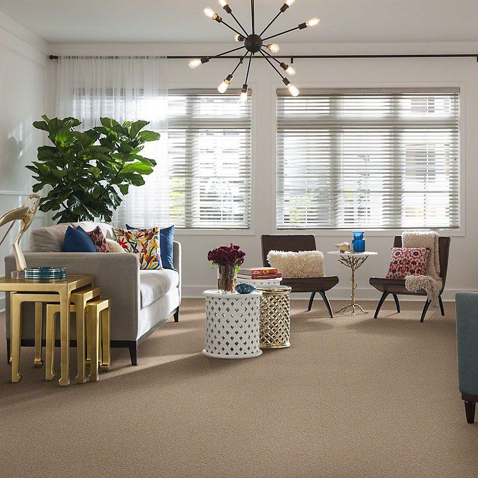 Shaw Floors Sandy Hollow III 12′ Adobe 00108_Q4277