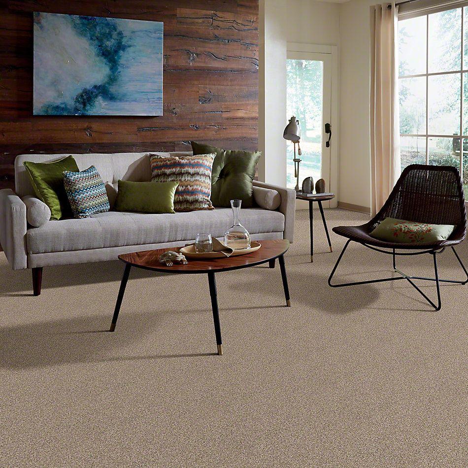 Shaw Floors Confident Smile Clay Stone 00108_E0649