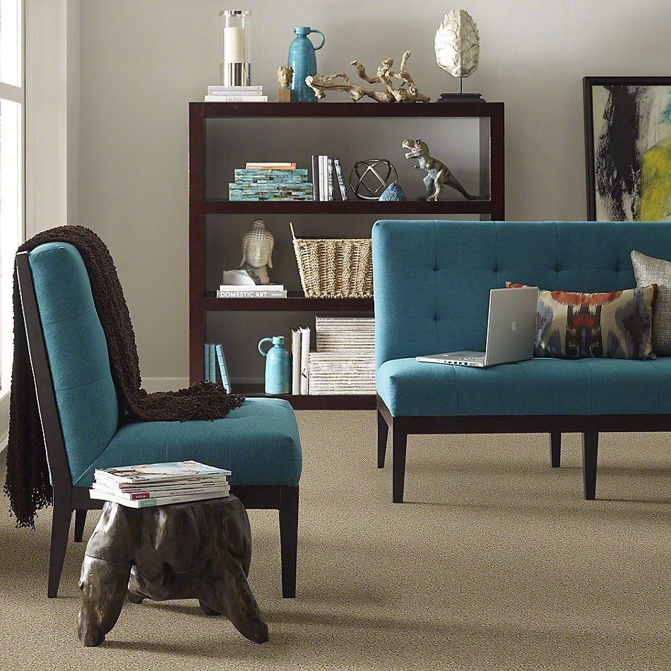 Shaw Floors My Choice I Clay Stone 00108_E0650