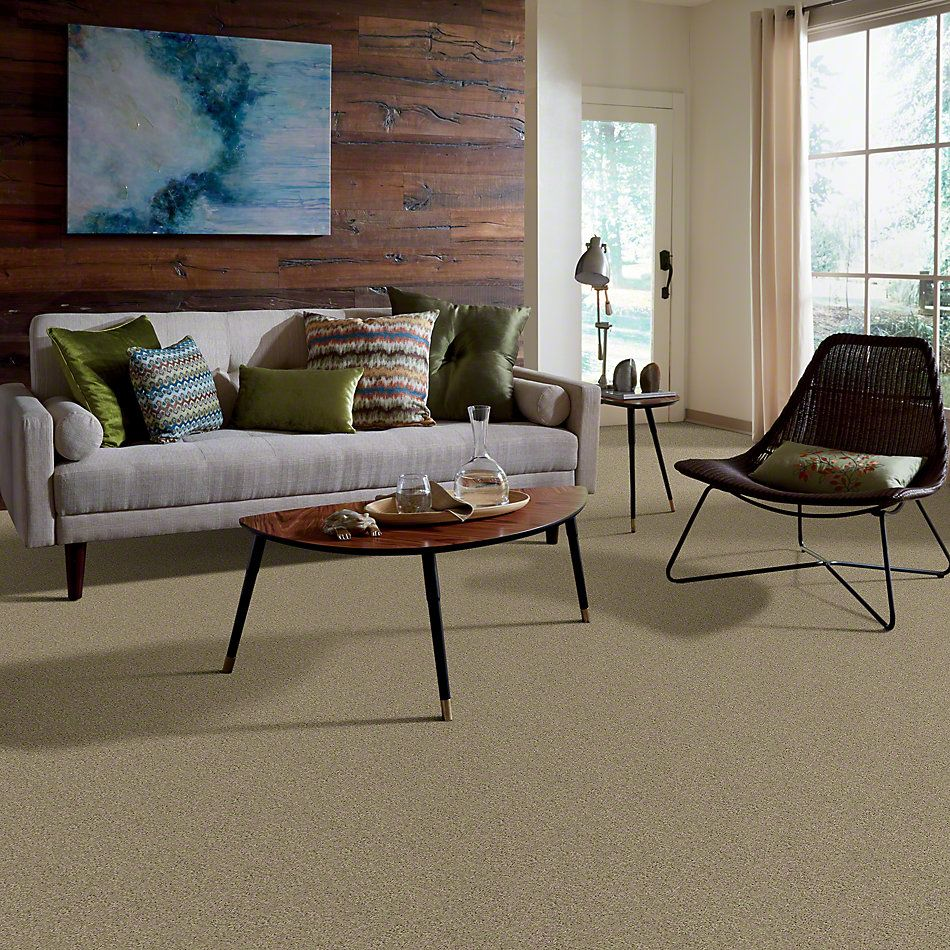 Shaw Floors My Choice III Clay Stone 00108_E0652