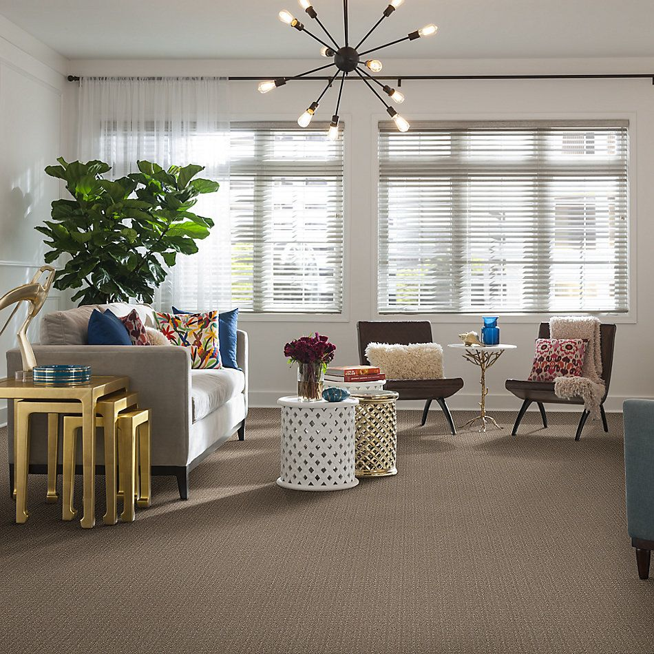 Shaw Floors Value Collections Transform Net Sand Swept 00109_5E351