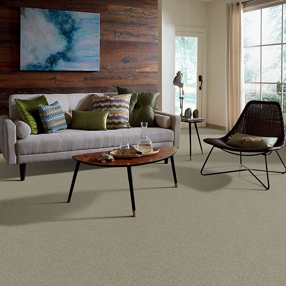 Shaw Floors My Choice III Cityscape 00109_E0652
