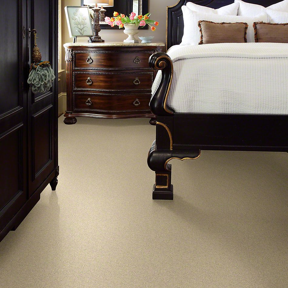 Shaw Floors Anso Colorwall Design Texture Platinum 12′ Chenille Soft 00110_52T73