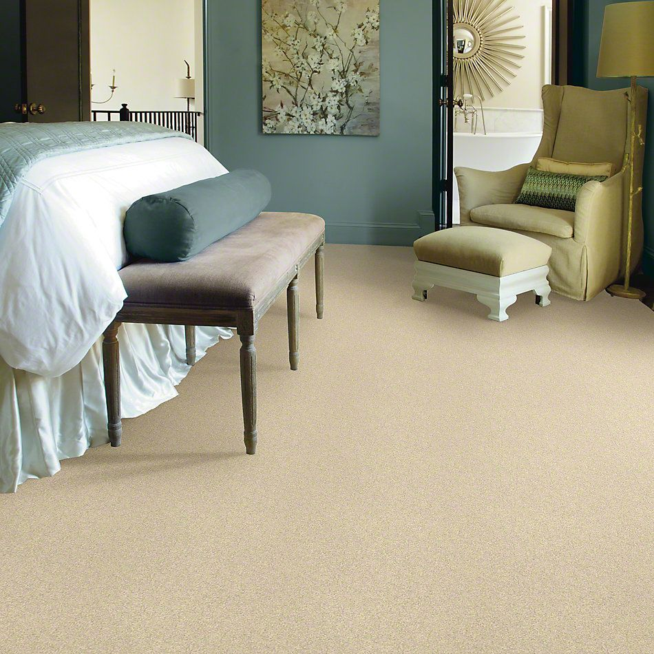 Shaw Floors Anso Colorwall Design Texture Platinum 15′ Chenille Soft 00110_52T74