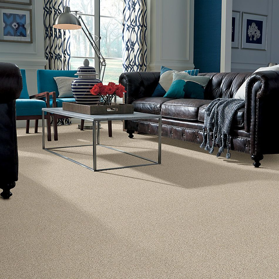 Shaw Floors Value Collections It's All Right Net White Washed 00110_5E095