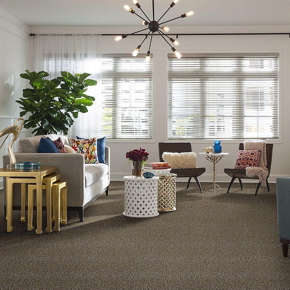 Shaw Floors Value Collections Break Away (b) Net Burlap 00110_5E281