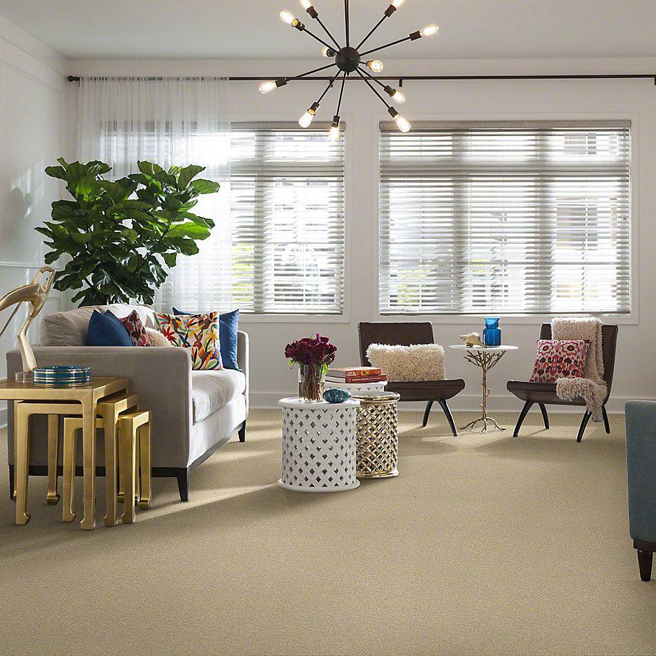 Shaw Floors Anso Colorwall Titanium Texture Chenille Soft 00110_EA709
