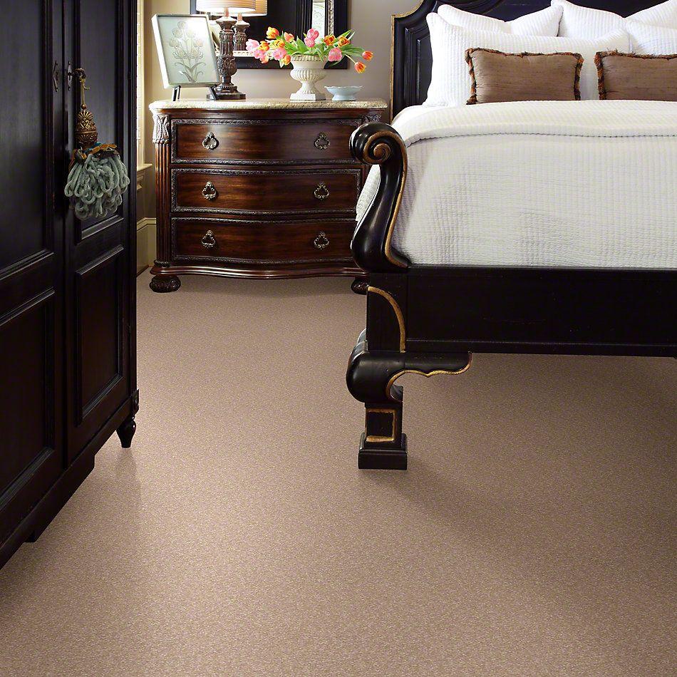 Shaw Floors Sandy Hollow I 12′ Stucco 00110_Q4273