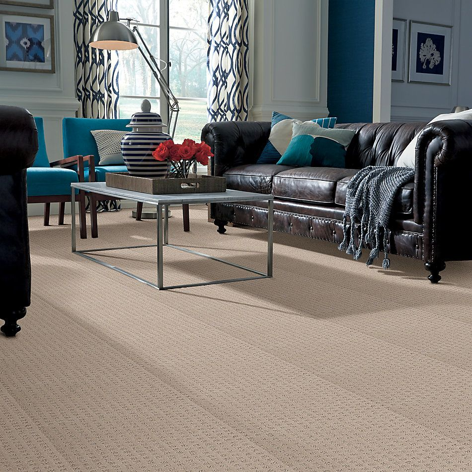 Shaw Floors Value Collections My Expression Lg Net Fawn 00110_CC39B