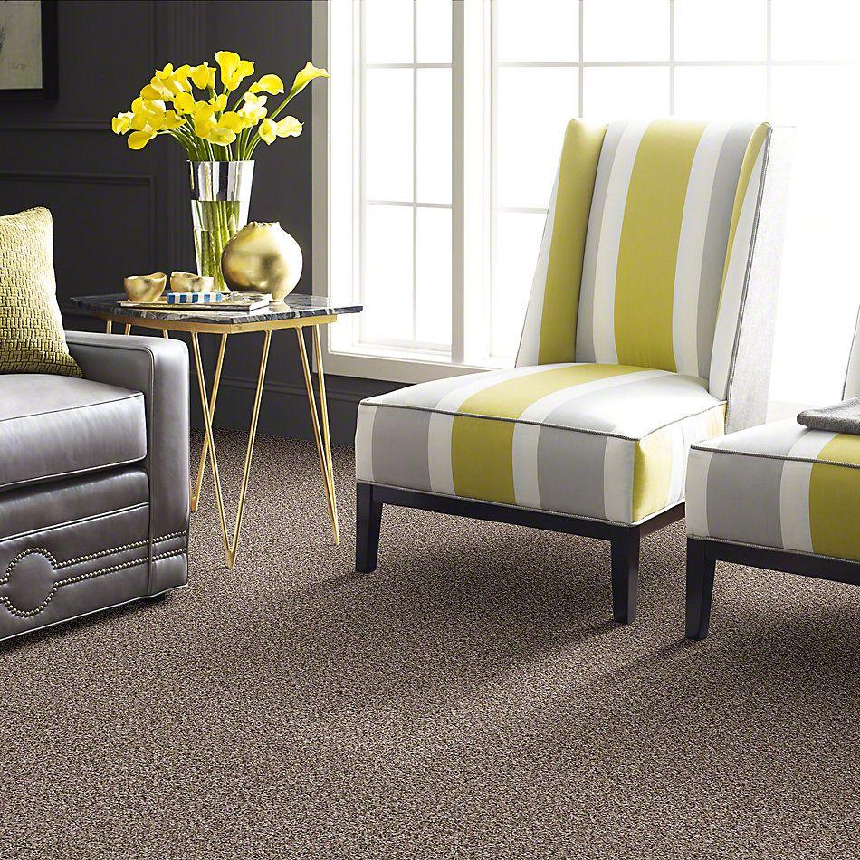 Shaw Floors Impress Me I Winter White 00110_E0685