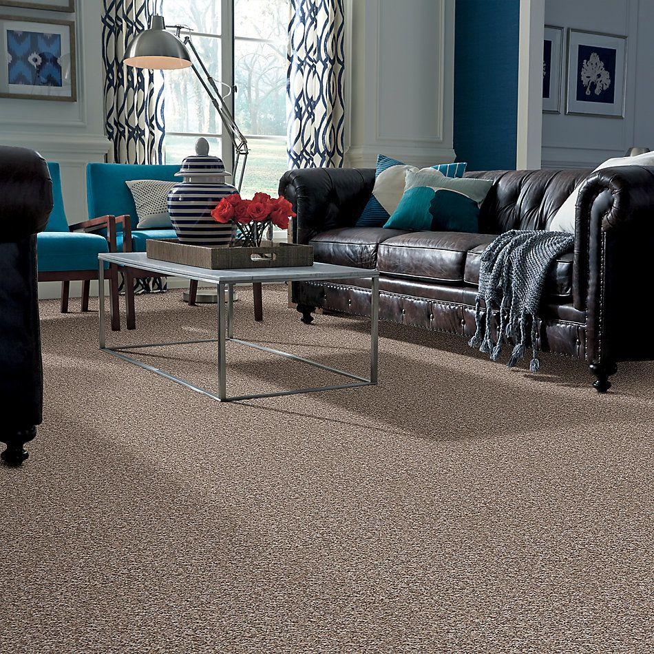 Shaw Floors Shaw On Shelf Diani Beach (t) Winter White 00110_SNS19