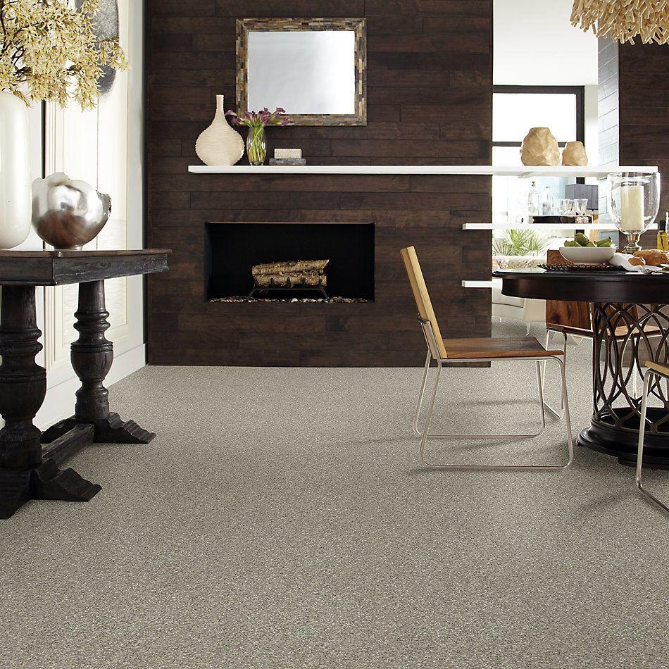 Shaw Floors Roll Special Xv795 Seagull 00110_XV795