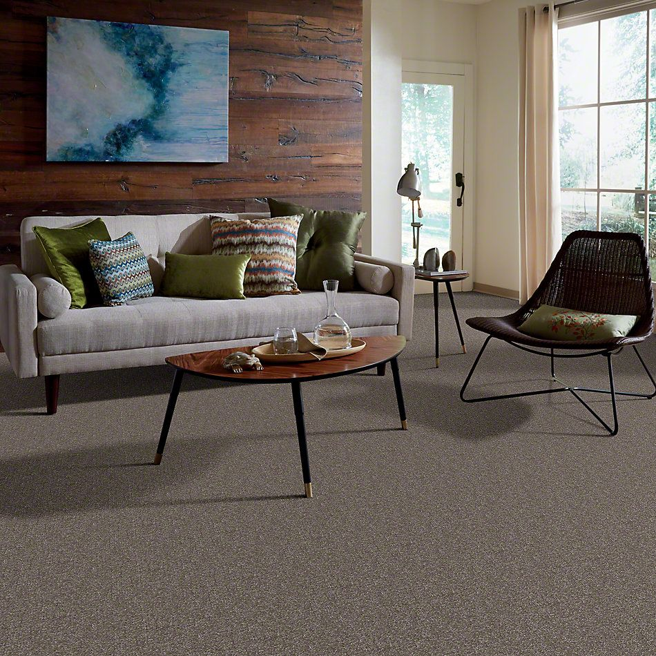 Shaw Floors Foundations Passageway II 15 Field Stone 00111_52S25