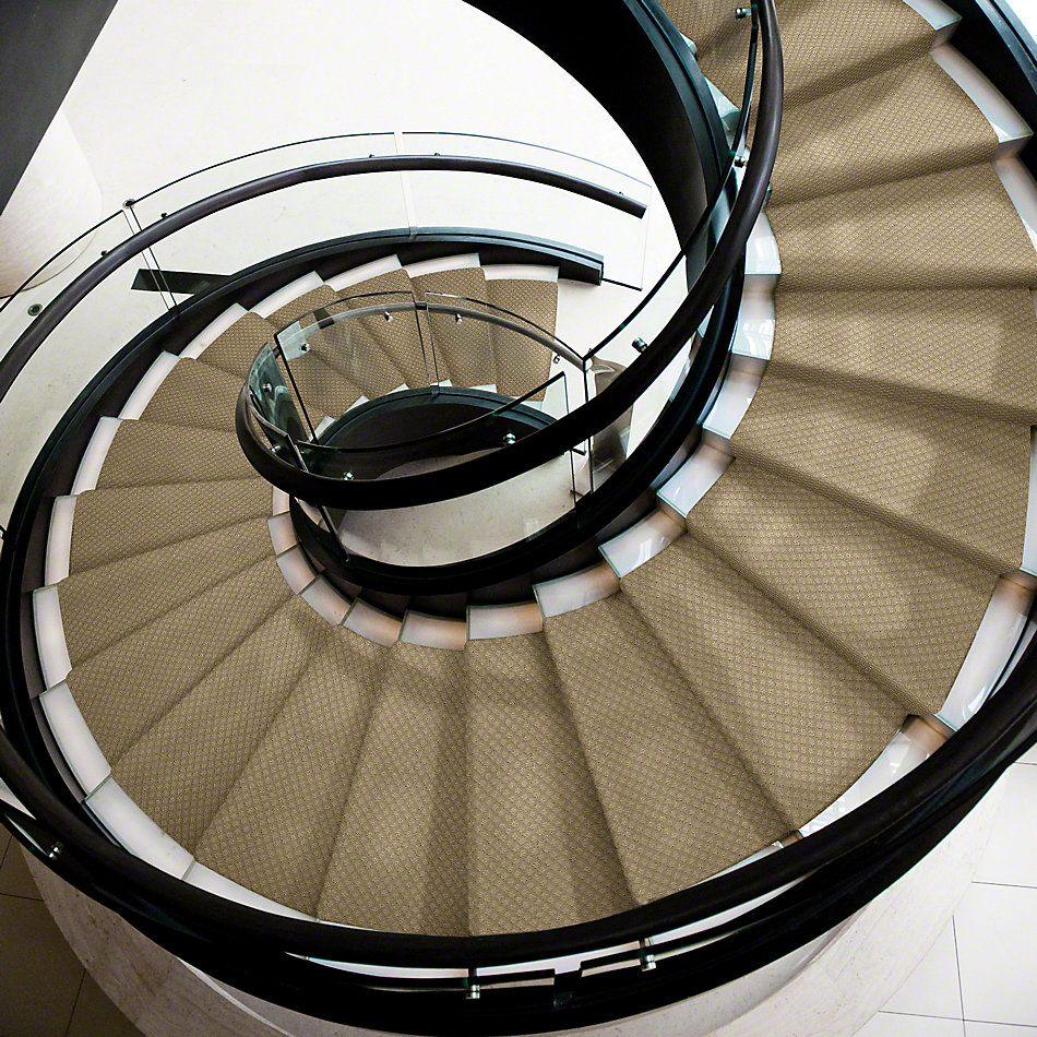 Shaw Floors Shaw Design Center New Venture Wool Skein 00111_5C734