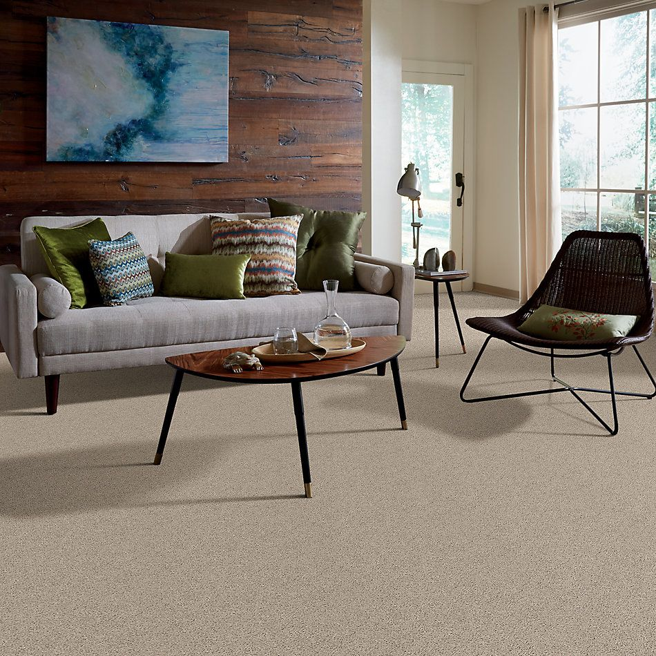 Shaw Floors Value Collections Break Away (s) Net Ecru 00111_5E282