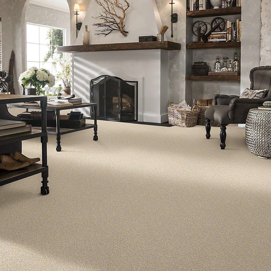 Shaw Floors Anso Colorwall Designer Twist Platinum (s) Parchment 00111_EA091