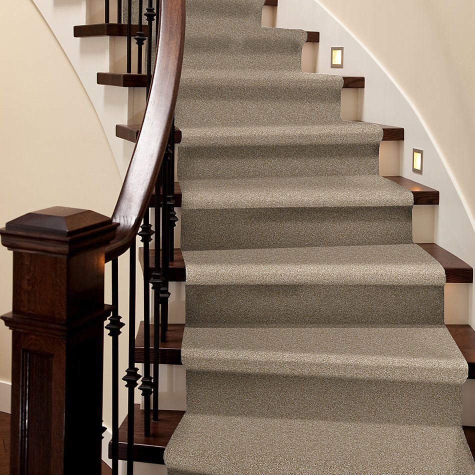 Shaw Floors Value Collections Virtual Gloss Net Blonde 00111_E9570