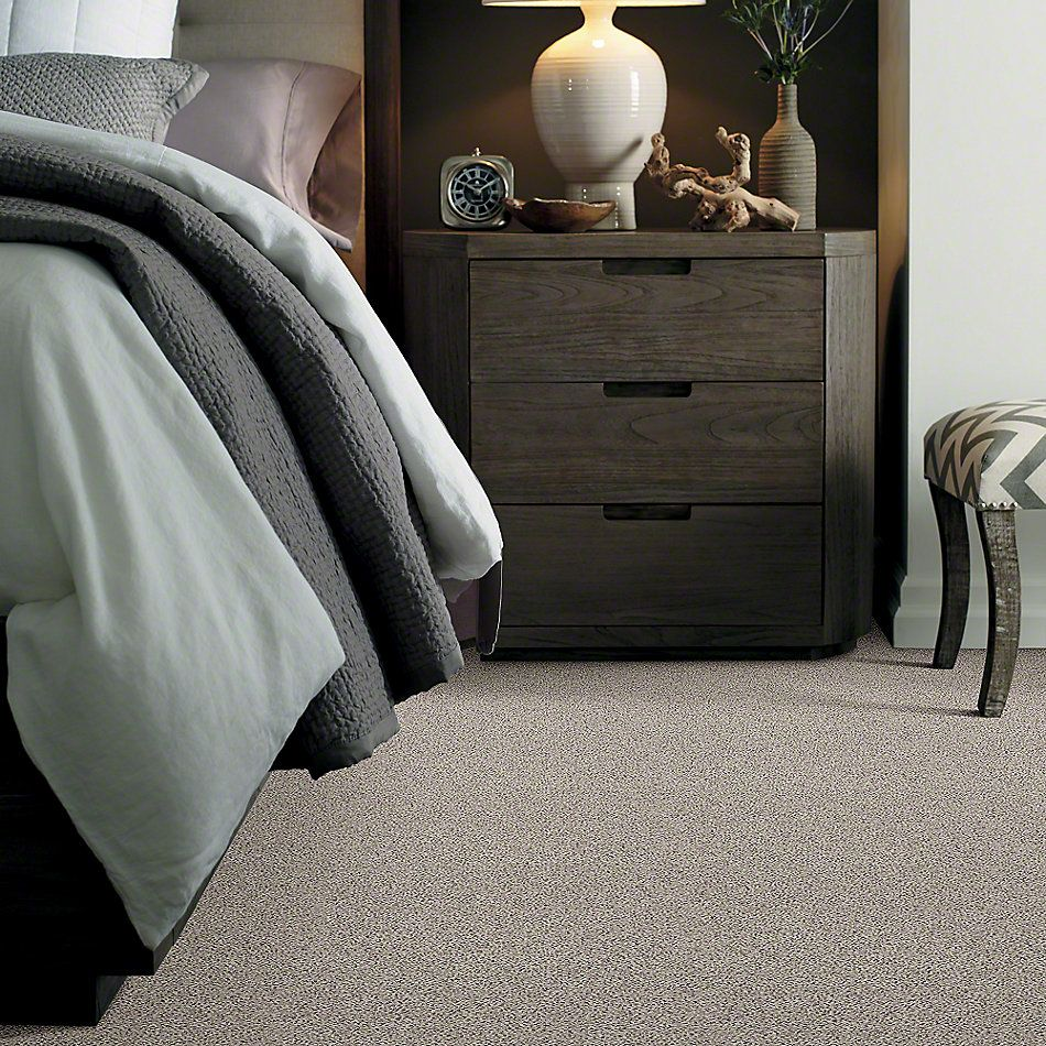 Shaw Floors Northern Parkway Taupe Stone 00112_52V34