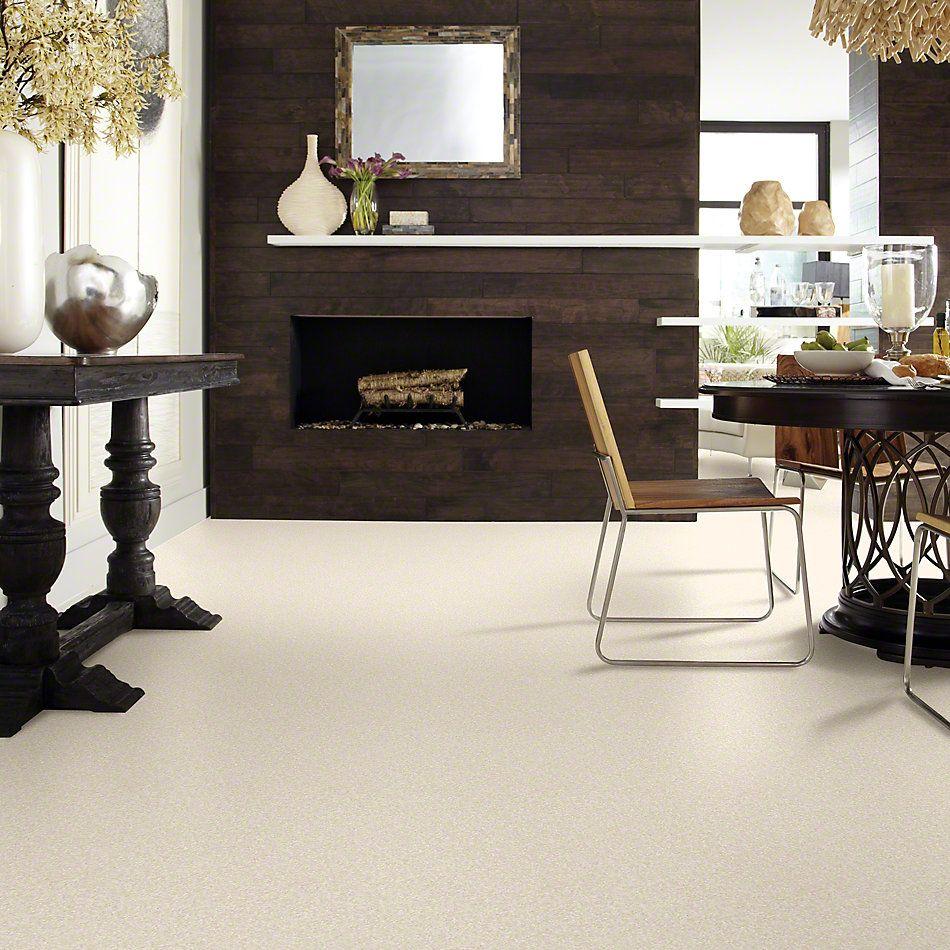 Anderson Tuftex Shaw Design Center My Place Turtle Dove 00112_854SD