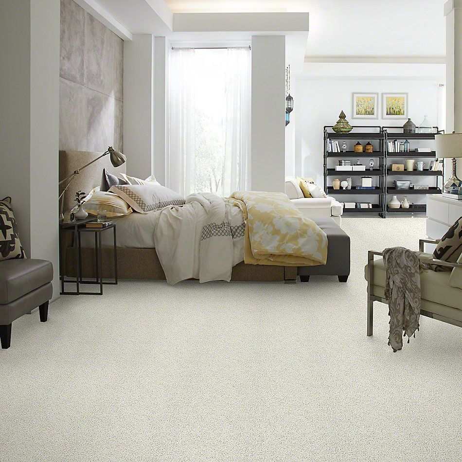 Shaw Floors Value Collections Color Flair Net Mayfair 00112_E0853