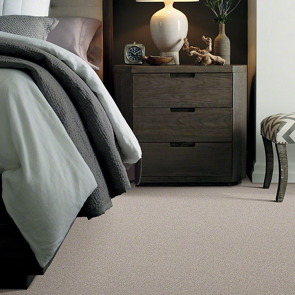 Shaw Floors Value Collections You Know It Net Doeskin 00112_E0927
