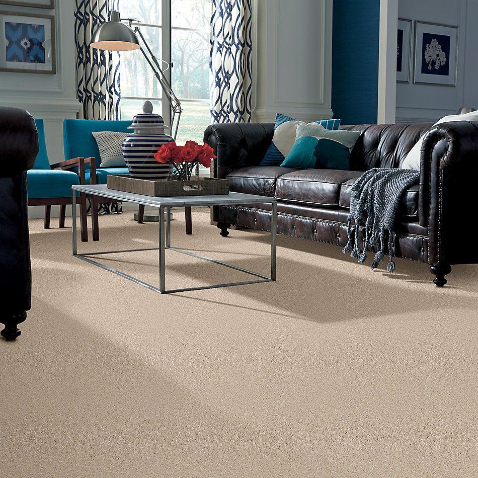 Shaw Floors SFA Resolution Nevada Sand 00113_Q1834
