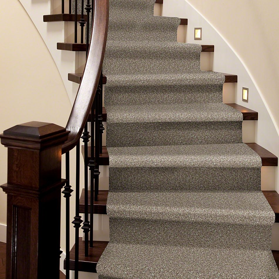 Shaw Floors Value Collections Explore With Me Twist Net Oatmeal 00114_E0849
