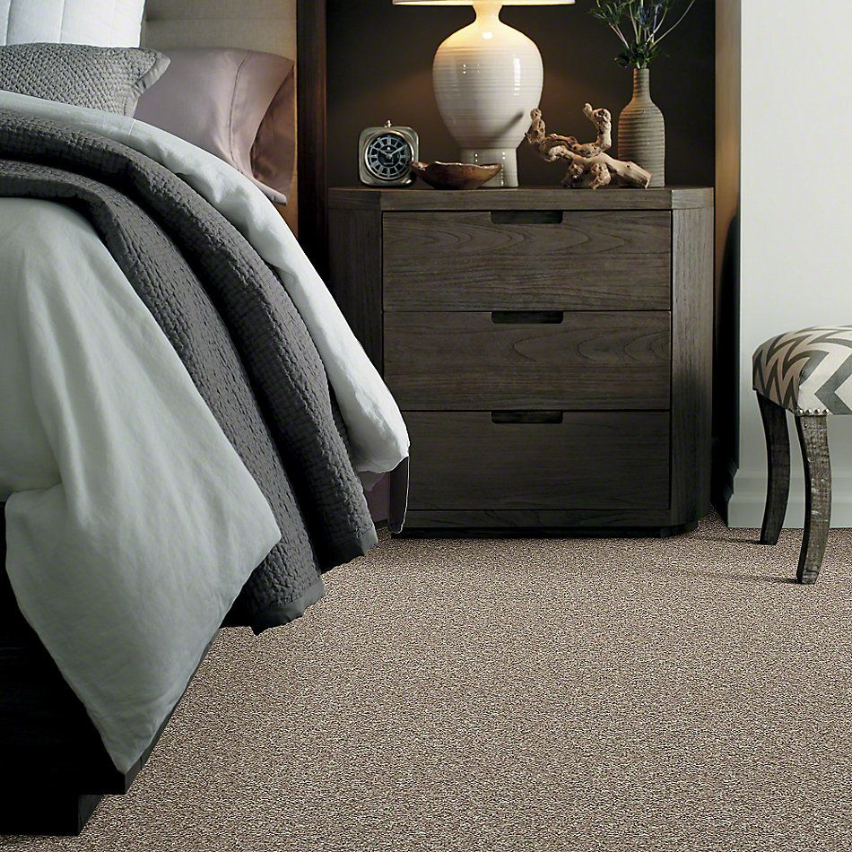 Shaw Floors Value Collections Dazzle Me Twist Net Oatmeal 00114_E0885
