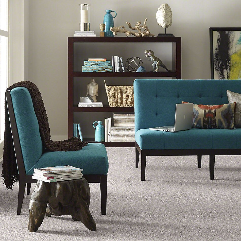 Shaw Floors Value Collections What's Up Net Catnip 00114_E0926