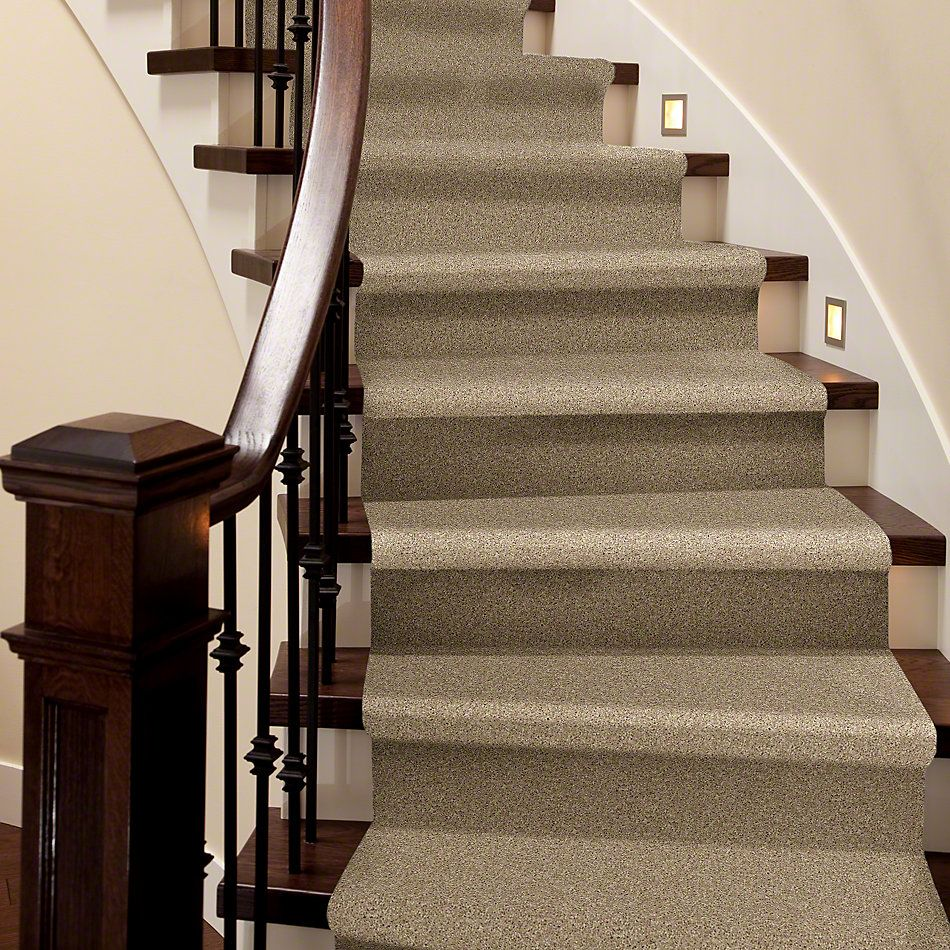 Shaw Floors Shaw Flooring Gallery In The Zone (s) Antique Linen 00116_5525G