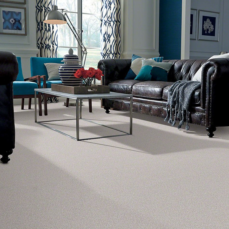Shaw Floors Shaw Flooring Gallery Lucky You Cement Mix 00116_5574G