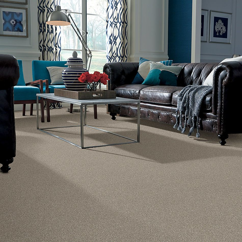 Shaw Floors Value Collections Virtual Gloss Net Morning Dew 00116_E9570