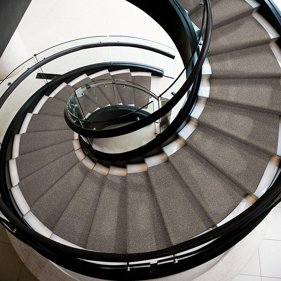 Shaw Floors Bellera Calm Simplicity II Kidskin 00119_5E273