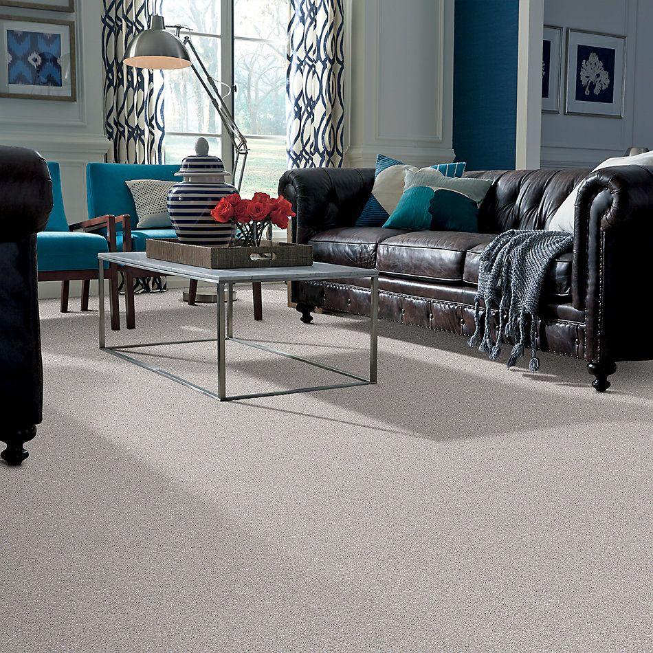 Shaw Floors Simply The Best Make It Mine II Soft Fleece 00120_5E256