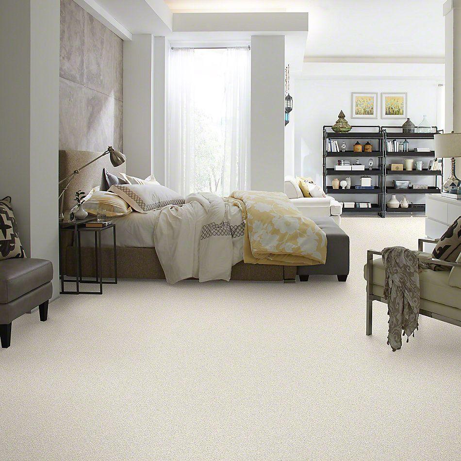 Shaw Floors Anso Colorwall Designer Twist Platinum (s) Pearl Glaze 00121_EA091