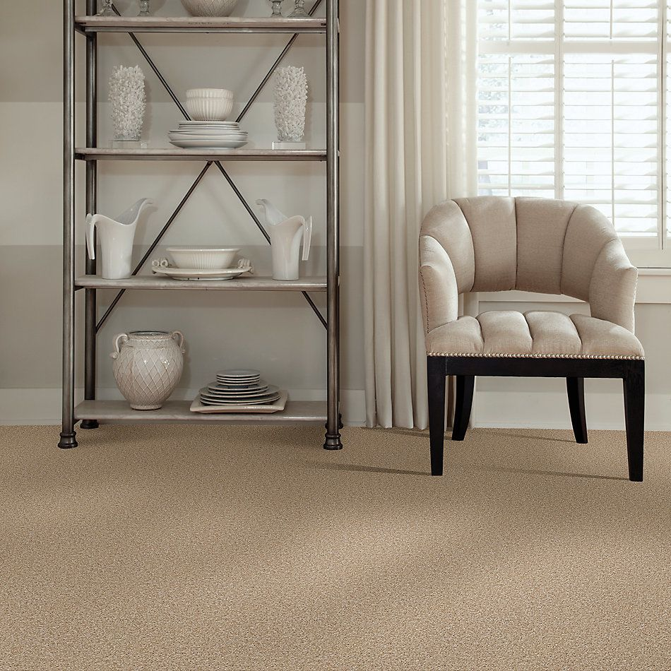 Shaw Floors SFA Ocean Pines 12′ Quiet Splendor 00121_EA041