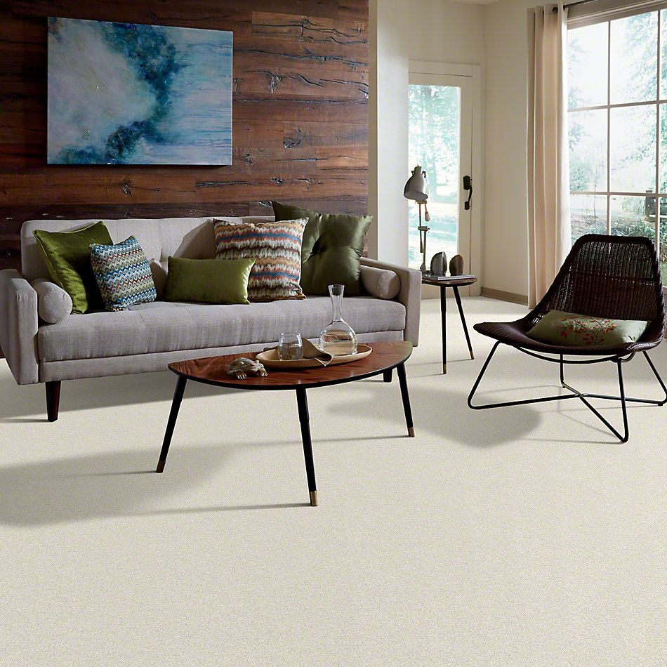 Shaw Floors Anso Colorwall Platinum Texture 12′ Pearl Glaze 00121_EA572