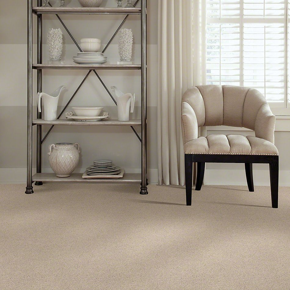 Shaw Floors Value Collections Cabana Life Solid Net Sugar Cookie 00122_5E003