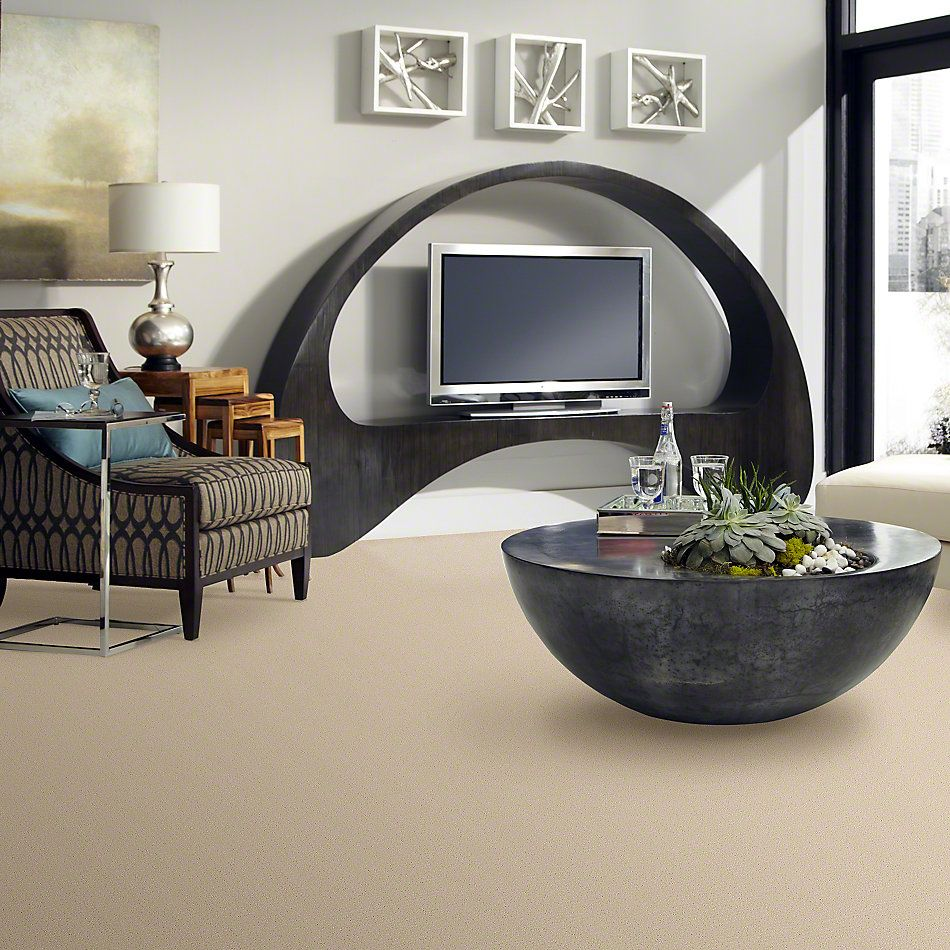 Anderson Tuftex American Home Fashions Pure Essence Macadamia 00122_ZA863