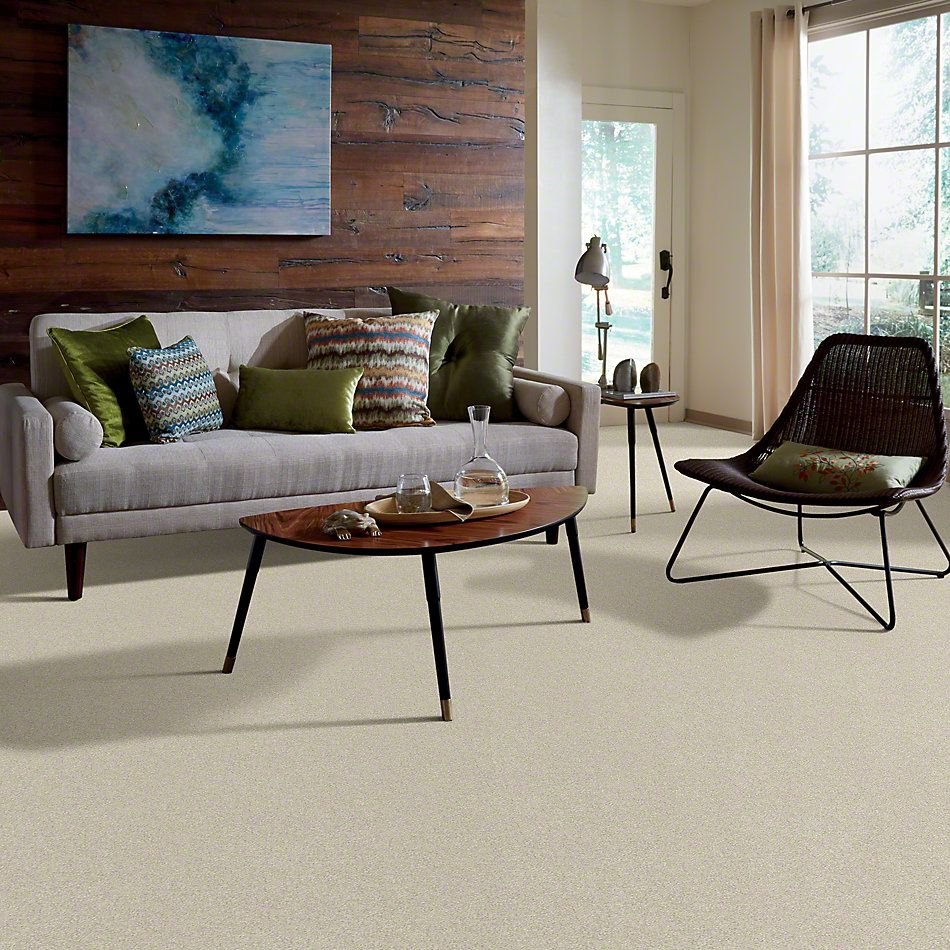 Shaw Floors Anso Colorwall Design Texture Platinum 15′ Candlewick 00124_52T74